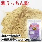 紫ウコン粉 送料無料 沖縄産 美容ダイエットに 紫うっちん粉 100g×2個セット