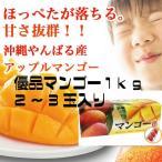 【早期予約受付】沖縄県産マンゴー(優品)1kg 贈り物にも 送料無料