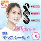 マウスシールド 透明マスク クリアマスク マスク フェイスシールド マウスガード 保護シールド 軽量 軽い 涼しい 洗える 飛沫防止 5枚セット