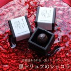 バレンタイン チョコレート ギフト 黒トリュフのショコラ 1個 カトルフィユ 広島 人気 おしゃれ 義理チョコ 手提げ袋付き(VD)