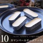 チーズケーキ カマンベールチーズケーキ 10個入り ギフト プレゼント 濃厚 お試し お祝い 内祝い お返し 誕生日 ホワイトデー