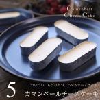 チーズケーキ カマンベールチーズケーキ 5個入り ギフト プレゼント 濃厚 お試し お祝い 内祝い お返し 誕生日 ホワイトデー