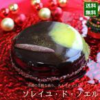 クリスマスケーキ 予約 2021 ソレイユ・ド・ノエル 12cm 4号 サイズ (目安:2人、3人、4人分)チョコレートケーキ 大人の味 かっこいい おしゃれ