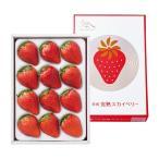 栃木県産 日光 完熟スカイベリー 4Lサイズ 420g(12粒) いちご 苺 数量限定