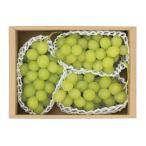 山形県南陽市産 ロザリオビアンコ 秀2kg(3〜4房) 大粒高級ぶどう マスカット系ぶどう 葡萄 数量限定 種あり