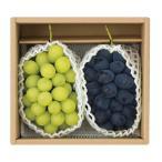 山形県南陽市産 佐竹ぶどう園 ぶどう2種詰合せC シャインマスカット ウィンク 計1.2kg(秀 各1房) ぶどう 葡萄 数量限定