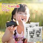安い米20キロ (5kg×4) ブレンド米 にこちゃん飯 格安 お米