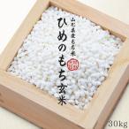 【玄米】 ヒメノモチ もち米 30kg 送料無料 新米 令和元年産 国内産 餅米 山形県産 【別途送料加算地域あり】