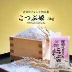 無洗米 5kg (5kg×1) 格安ブレンド米 こつぶ姫 お米