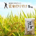 玄米 5kg 安い 令和元年産 国内産 格安ブレンド米 玄米のりすけ 5キロ