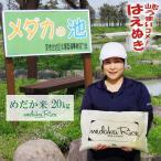 メダカが泳ぐキレイな田んぼで育ったお米 20kg (5kg×4袋) めだか米 (玄米・白米・無洗米)精米方法選べます 山形県産 はえぬき