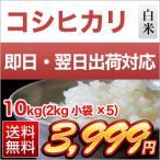 お米 10kg 香川産 コシヒカリ 2kg×5袋 平成27年(2015年)