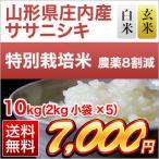 お米 山形県庄内産 ササニシキ 10kg(2kg×5袋) 特別栽培米 令和元年産(2019年)