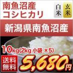 お米 新潟県 南魚沼産 コシヒカリ 10kg (2kg×5袋) 平成26年(2014年) 特Aランク