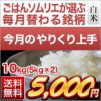 やりくり上手 お米 高知県産 にこまる 10kg(5kg×2袋) エコファーマー認定米 平成28年(2016年) 特Aランク