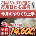 やりくり上手 お米 高知県産 にこまる 30kg(5kg×6袋) エコファーマー認定米 平成28年(2016年) 特Aランク