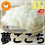 米 送料無料 28年産 夢ごこち 白米5kg 岐阜県揖斐産 白鳥ファーム