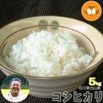 新米 5kg 白米 コシヒカリ 石川県白山産 吉左エ門 29年産 特別栽培米 送料無料