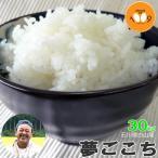 ショッピング米 米 30kg 玄米 送料無料 特別栽培米 28年産 夢ごこち 石川県白山産 吉左エ門