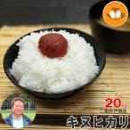 新米 20kg 玄米 三重県伊賀産 キヌヒカリ ヒラキファーム 29年産 送料無料
