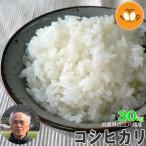 米 送料無料 30kg 玄米 環境こだわり米 28年産 コシヒカリ 滋賀県近江八幡産 内野営農組合