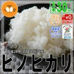 米 30kg 玄米 送料無料 環境こだわり米 28年産 ヒノヒカリ 滋賀県長浜産 アグリ39