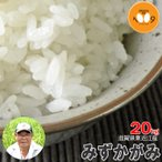 新米 玄米 20kg 滋賀県長浜産 みずかがみ アグリ39 29年産 環境こだわり農産物(減農薬) 送料無料