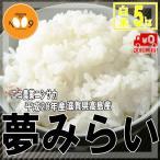 米 白米 5kg 送料無料 夢みらい 28年産 滋賀県高島産 エコ農業ニシサカ