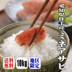 新米入荷!【送料無料】【幻の米】【29年産】愛知県作手産ミネアサヒ 10kg(5kg×2)