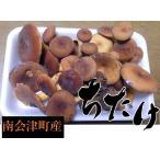 香菇 - 国産天然きのこ(キノコ) ちたけ(乳茸・チタケ) 徳用300g ギフト対応