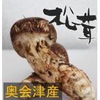 松茸 松茸 国産 極上150g  奥会津産 山形県産 マツタケを採りたて 新鮮 産地直送で低価格 ギフト対応