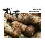 松茸 国産 松茸 特上(蕾)約100g 奥会津産 山形県産 マツタケを採りたて 新鮮 産地直送 ギフト対応