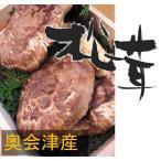 松茸 国産松茸 開き 約150g 奥会津産 山形県産 マツタケを採りたて 新鮮 産地直送 ギフト対応