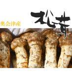 松茸 国産 松茸 コロ(小型 蕾・中開き)約100g  奥会津産 山形県産 マツタケを採りたて 新鮮 産地直送 ギフト対応