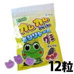 カムカムフレッシュ キシリトールグミ グレープ味1袋(12粒入)