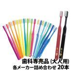 歯ブラシ 大人用 ×20本 福袋 MY歯ブラシ 歯科専売品 メール便送料無料