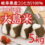 岐阜県産コシヒカリ 大島米5kg 29年産