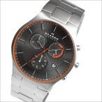 SKAGEN スカーゲン 腕時計 SKW6076 メンズ TITANIUM チタニウム