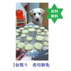 果物野菜乾燥機 からりんこ 安価/東京ユニコム