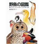 野鳥の図鑑—にわやこうえんの鳥からうみの鳥まで (福音館の科学シリーズ) 中古
