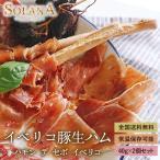 ポイント消化 訳あり イベリコ豚生ハム  ハモンイベリコ24ヶ月以上熟成 80g 送料無料 食品お試し