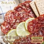 ポイント消化 訳あり セール スペイン産サラミ イベリコ サラミ チョリソ 二種類から選べるおつまみ 送料無料 プレゼントにも