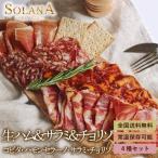 ポイント消化 訳あり スペイン産イベリコ豚・食べ比べ おつまみ4品セット 生ハム2種+サラミ2種 食品お試し