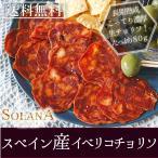 ポイント消化 訳あり セール スペイン産 長期熟成生ハム仕立て イベリコ豚サラミ赤 100g 送料無料 食品お試し