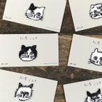 �����ߥ業 ���åץꥱ Cat  ���������198�ߡ� ������� ��åڥ���� �ɽ� ���ɤ� ưʪ ǭ ���� ���å�