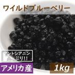 ドライフルーツ ワイルドブルーベリー 1kg アメリカ産 (野生種) 送料無料 ドライブルーベリー ブルーベリー グルメ みのや