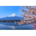 マグネット 観光おみやげ(富士山・河口湖と桜)