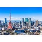 マグネット 観光おみやげ(東京タワー)
