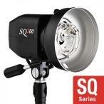 ストロボ PROPET(プロペット) SQ300