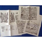 中世セット  農民像 ドイツ騎士像 植物図鑑 魔女狩り 刑罰